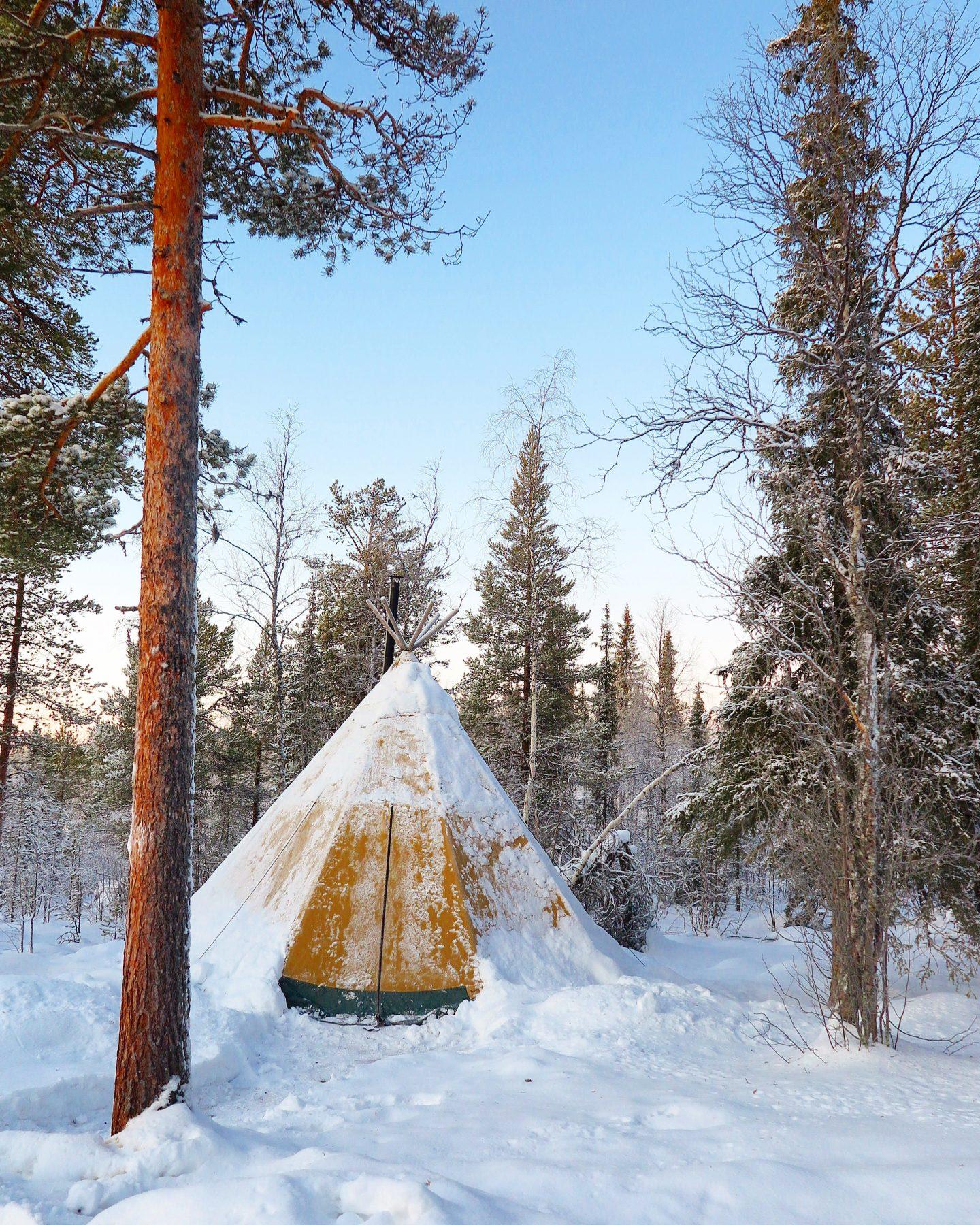 SWEDISH LAPLAND – A PHOTO DIARY